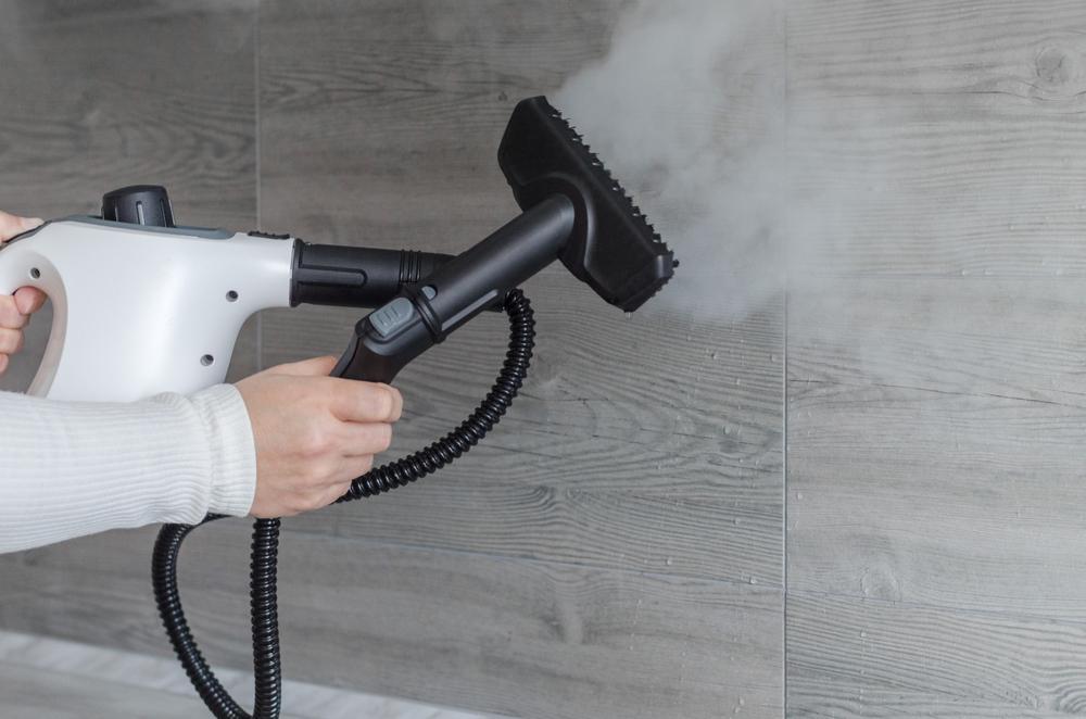 best handheld steam cleaner on bathroom tiles