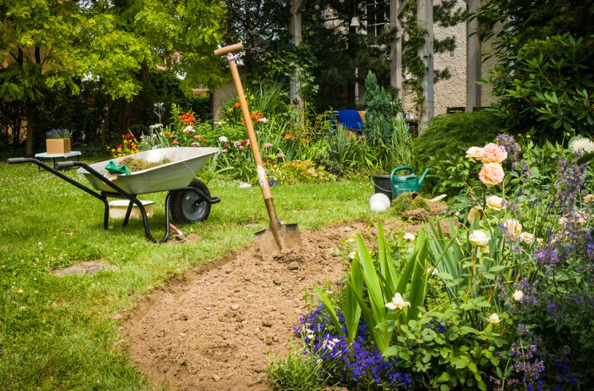 Best Weed Killer for UK Gardens – Strongest and Fast acting reviewed