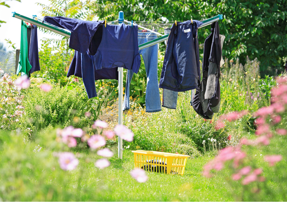 clothes drying on best rotary washing line