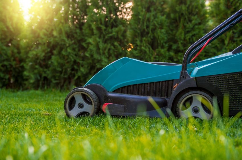 Best Electric Lawn Mowers For UK Gardens – Review