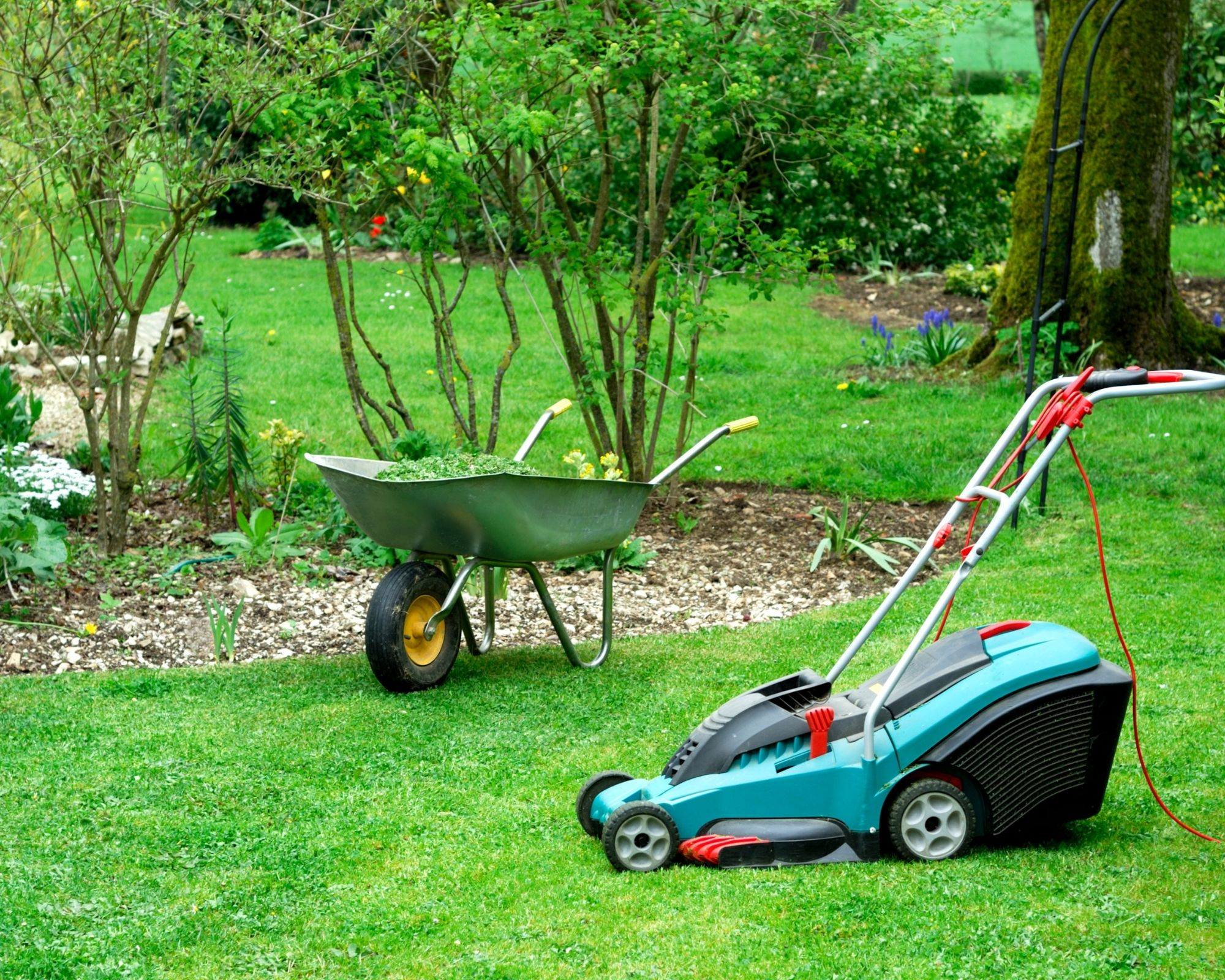 best electric lawn mower with wheel barrow
