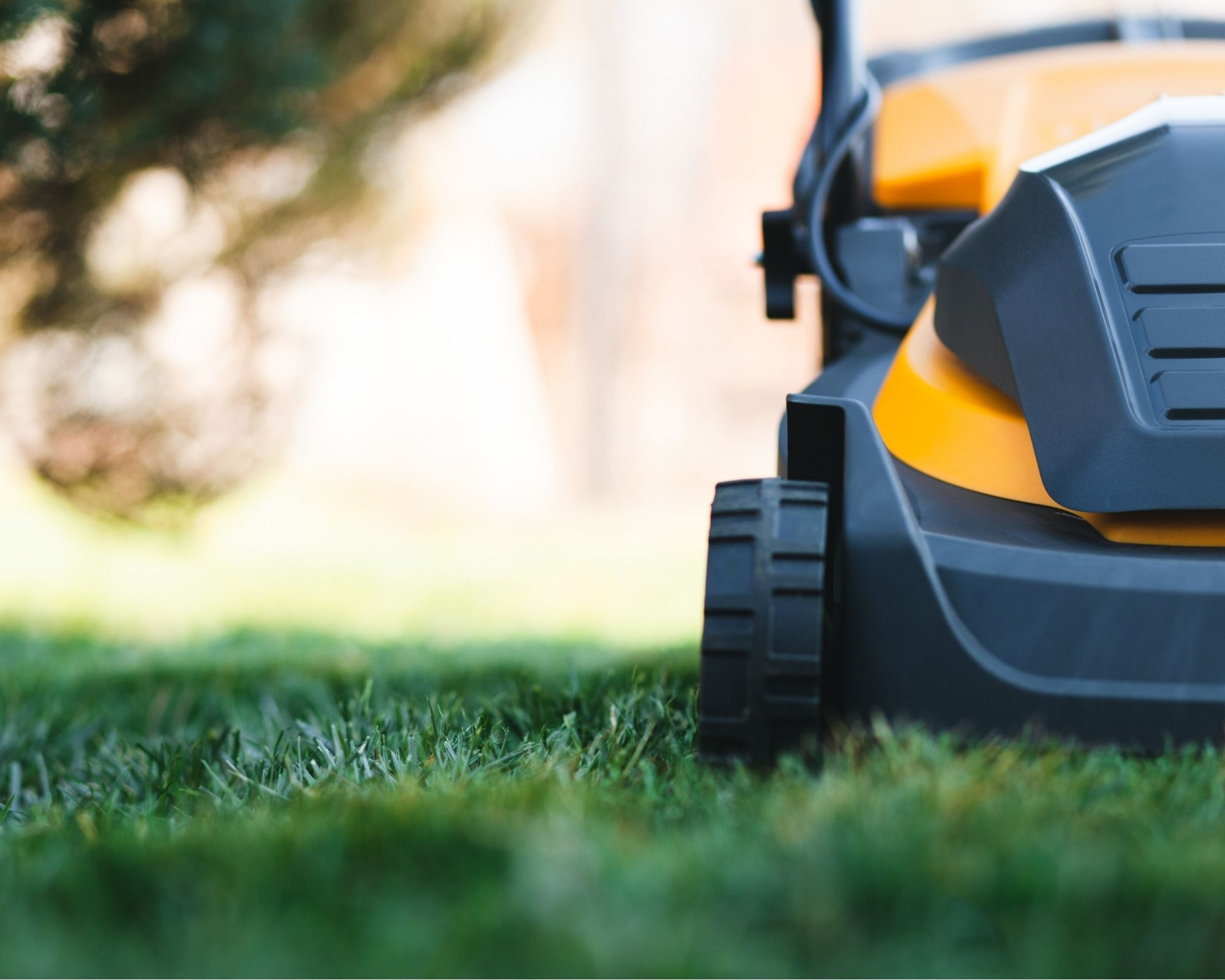 close up best electric lawn mower