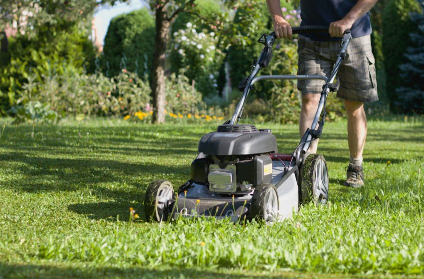 Best Petrol Lawn Mower for UK Gardens – Review