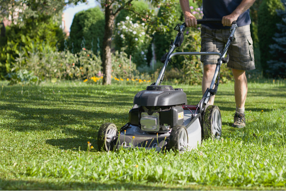 man pushing best petrol lawn mower