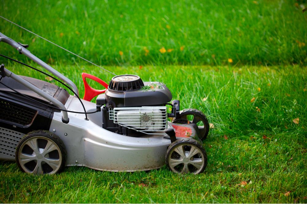close up best petrol lawn mower